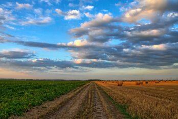 landbouwregeling